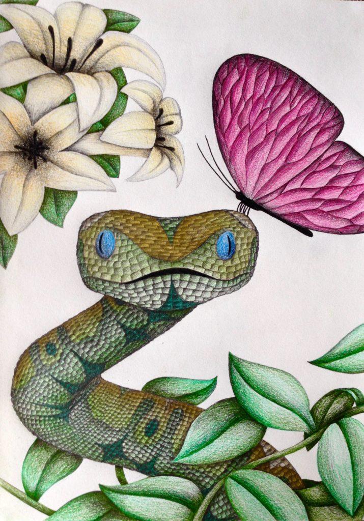 Schlange-Schmetterling