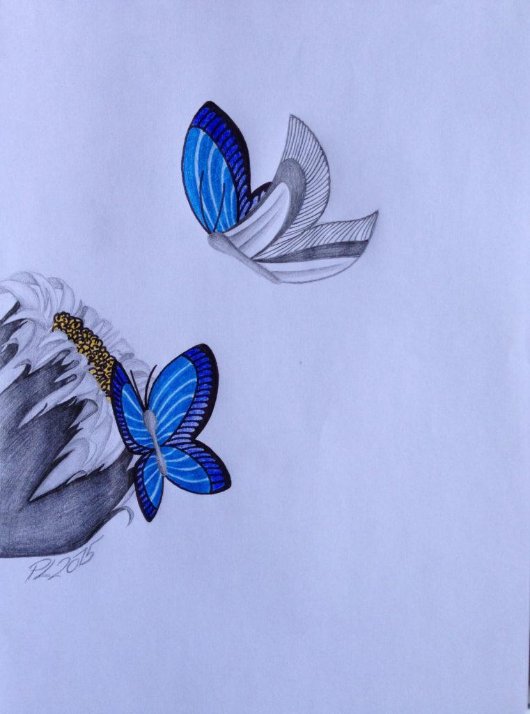 TwoBlueButterfly